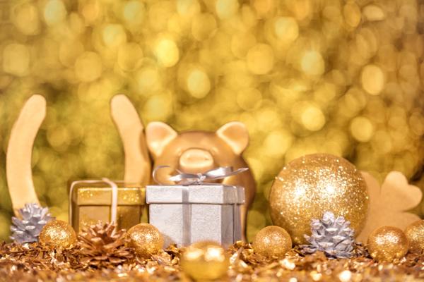 Sorteos de Navidad TuLotero