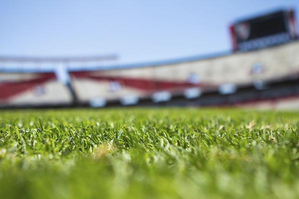Equipo de fútbol TuLotero